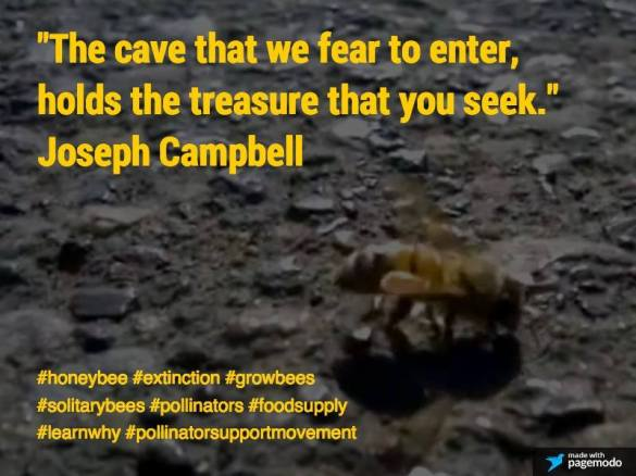 Joseph Campbell Quote (c) All Rights Reserved